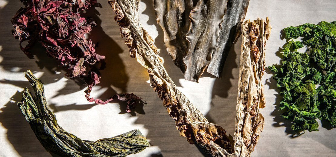 Seaweed: Ocean Spices